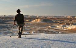 Lisiado en el desierto blanco Imagenes de archivo