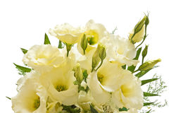 Lisianthus flowers. Bouquet of lisianthus flowers isolated with clipping path on white background Royalty Free Stock Image