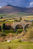 Lispole viaduct. Dingle Peninsula. Kerry. Ireland. The old Lispole viaduct. Dingle Peninsula.  county Kerry. Ireland Royalty Free Stock Image
