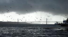 Lissabon Lizenzfreie Stockfotografie