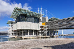 Lissabon Oceanarium Lizenzfreies Stockfoto