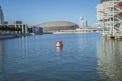 Lissabon Oceanarium, maskot Fotografering för Bildbyråer