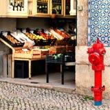 LISSABON PORTUGAL - Januari 20, 2016: Livsmedelsbutik med fruktnolla arkivfoto