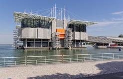 Lissabon Portugal - Maj 15: Lissabon Oceanarium i Lissabon på Maj 15, 2014 lisbon oceanarium Fotografering för Bildbyråer