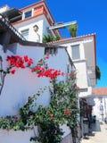 Lissabon Riviera Cascais Reis in Portugal Royalty-vrije Stock Fotografie