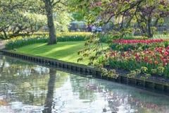 LISSE, НИДЕРЛАНДЫ - 22-ое апреля 2017: Озеро окруженное цветками стоковое фото