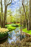 Lisse, Keukenhof (Netherlands) Stock Photos
