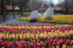 Lisse Nederländerna - April 20, 2013: Keukenhof Royaltyfria Foton