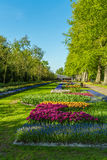 LISSE, NEDERLAND - APRIL 4, 2008: De lentemening van beroemde Keuken Royalty-vrije Stock Foto's
