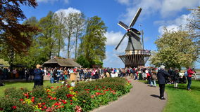 Lisse, The Netherlands - May 7, 2015: Old windmill with many people in famous garden in Keukenhof. stock video footage