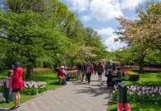 Lisse, os Países Baixos - 7 de maio de 2015: Os turistas visitam o jardim famoso em Keukenhof Foto de Stock Royalty Free