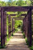 Listón de madera en jardín foto de archivo