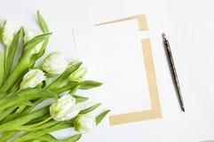 List, pióro i bukiet na białym tle, Zaproszenie karty lub list miłosny z białymi tulipanami, Odgórny widok, mieszkanie nieatutowy Obrazy Royalty Free