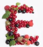 list soczysta owoc E Obrazy Stock