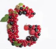 list soczysta owoc G Zdjęcia Stock