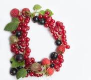 list soczysty owocowy d Zdjęcia Royalty Free