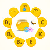 The list of vitamins and mineral components that go into honey. Royalty Free Stock Image