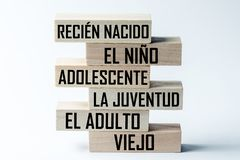 A list of wooden blocks lying on top of each other with a list of the stages of growing up a person in Spanish. Horizontal frame. A list of wooden blocks lying stock photo