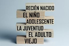 A list of wooden blocks lying on top of each other with a list of the stages of growing up a person in Spanish, in the translation. Of the word: newborn, child stock image
