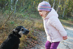 So! Listen to ME! Training a dog Little Girl in a birch forest. Royalty Free Stock Images