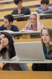 Listening students in a lecture hall Royalty Free Stock Image