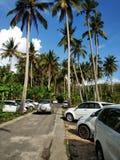Listopad 12, 2018, Nusa Penida wyspa blisko Bali, Indonezja, Samochodowy parking blisko wysokich drzewek palmowych obraz stock