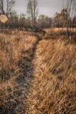 Listopadu krajobraz Fotografia Royalty Free