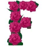 Listowa F kwiatu śliczna ilustracja Zdjęcia Royalty Free