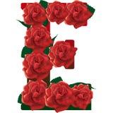 Listowe E czerwone róże ilustracyjne Fotografia Royalty Free