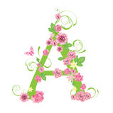 listowe róże Obraz Stock