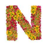 Listowego N abecadło robić od cynia kwiatu Obraz Stock