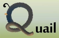 Listowy Q z skutkiem futerko royalty ilustracja