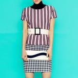 Listras e quadriculado na combinação de ClothingFashion L à moda Imagens de Stock