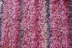 Listras roxas Imagem de Stock