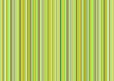 Listras verdes Foto de Stock