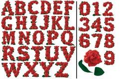 Listy i liczb czerwonych róż ustawiająca ilustracja Zdjęcie Royalty Free