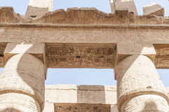 Listy, rysunki i znaki na ścianach antyczna Egipska świątynia, Fotografia Royalty Free