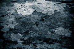 Liszaj na rockowego abstrakcjonistycznego background/Abstrakcjonistycznym tle liszaj, kamień i Szorstki tekstury tło/ Zdjęcie Stock