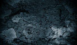 Liszaj na rockowego abstrakcjonistycznego background/Abstrakcjonistycznym tle liszaj, kamień i Szorstki tekstury tło/ Obrazy Stock
