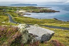Liszaj Zakrywający kamień na irlandczyka wybrzeżu obraz royalty free