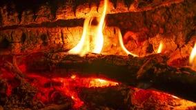 LIT φωτιών τη νύχτα στο δασικό χρονικό σφάλμα φιλμ μικρού μήκους