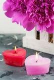 Lit миражирует сформированное сердце, фиолетовые пионы Стоковое Фото