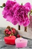 Lit миражирует сформированное сердце, фиолетовые пионы Стоковые Изображения