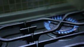 Lit-brander op het gasfornuis stock footage