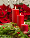 Lit candles on centerpiece with greens. Lit red candles in an evergreen Christmas arrangement Royalty Free Stock Images