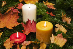 Lit candles sitting in a bed of branches Stock Images