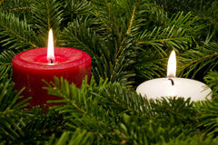 Lit candles sitting in a bed of branches Royalty Free Stock Photo