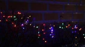 Lit christmas lights stock video