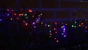 Lit christmas lights stock footage