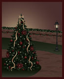 Lit Christmas Tree Royalty Free Stock Photo